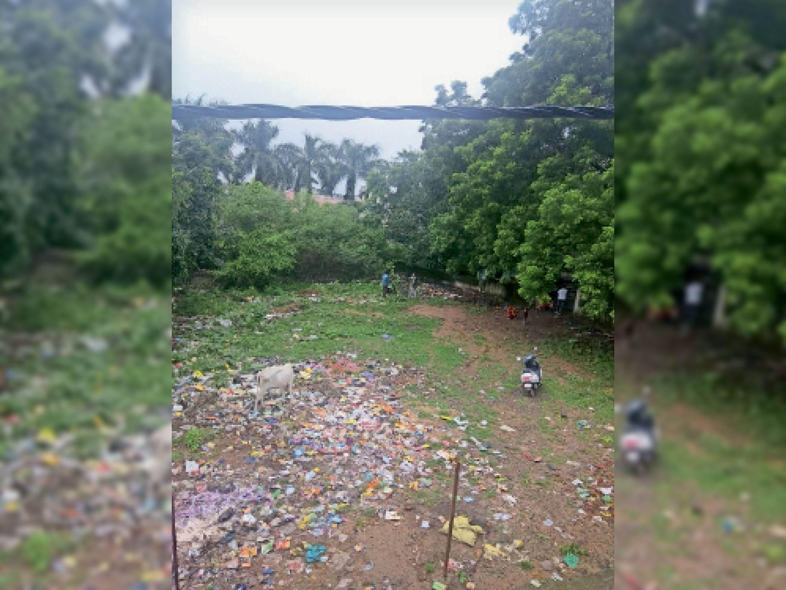 प्रतापनगर में नपा नहीं करा रही सफाई, कचरा हटाने शुल्क देने को तैयार हैं लोग।