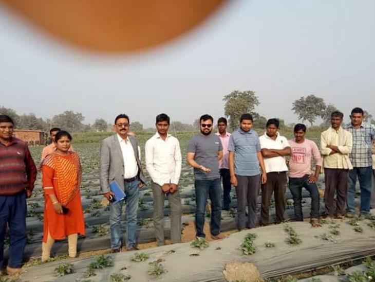 पहली बार 2017 में इन्होंने लगभग तीन एकड़ जमीन पर स्ट्रॉबेरी की खेती की। तब दीपक को बारह लाख रु की बचत हुई थी।