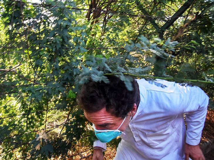 हाथरस जाने से पुलिस ने रोका तो राहुल झाड़ियों के बीच से निकलते दिखे, चोट लगने पर प्रियंका ने हाल जाना उत्तरप्रदेश,Uttar Pradesh - Dainik Bhaskar