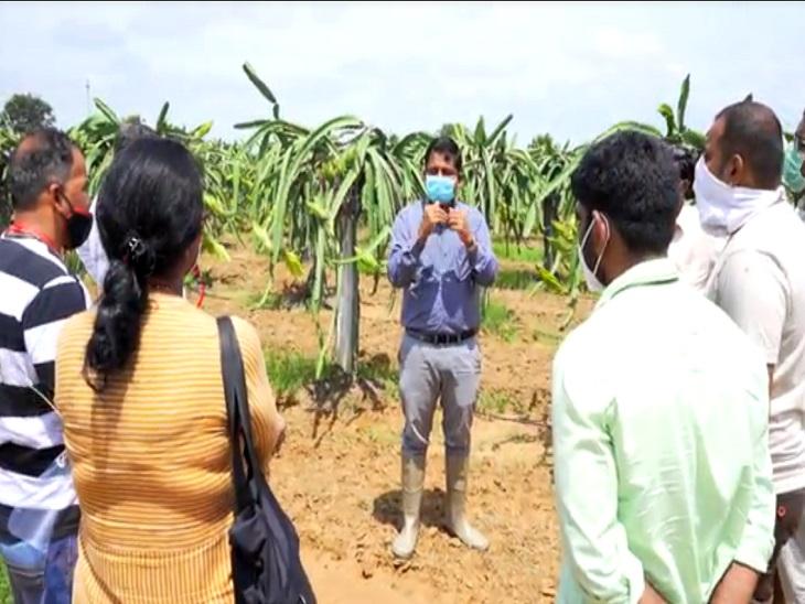 श्रीनिवास हर शनिवार को किसानों को ट्रेनिंग देते हैं। उनके साथ अभी 2 सौ से ज्यादा किसान जुड़े हैं।