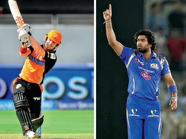 ऑस्ट्रेलिया के डेविड वॉर्नर 50 बार 50+ स्कोर बना चुके, श्रीलंका के लसिथ मलिंगा ने 170 विकेट लिए। - Dainik Bhaskar