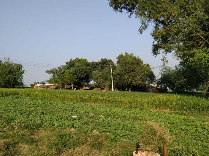इसी खेत में 2010 में जब सीएम नीतीश कुमार आए थे तब हेलीपैड बनाया गया था।