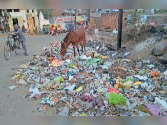 कलेक्टर ने एस्मा का प्रस्ताव खारिज कर कहा- ईकोग्रीन पर एफआईआर कराकर गाड़ियां जब्त करे नगर निगम|ग्वालियर,Gwalior - Dainik Bhaskar