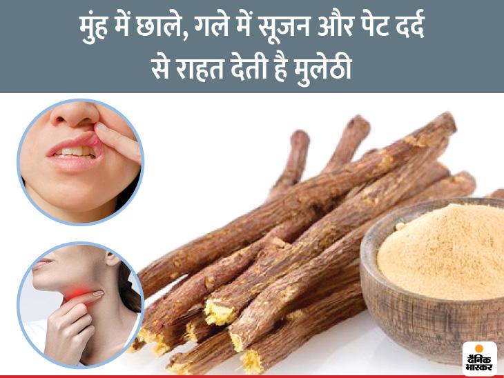 मुंह में छाले हो या गला बैठा हो मुलेठी से मिलेगी राहत, यह पेट में ऐंथन और दर्द दूर कर रोगों से लड़ने की क्षमता बढ़ाती है|लाइफ & साइंस,Happy Life - Dainik Bhaskar
