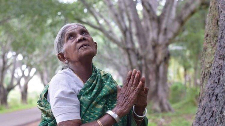 1991 में थिमक्का के पति का निधन हो गया, इसके बाद तो उन्होंने पूरा जीवन पौधे लगाने और पेड़ों की रक्षा के नाम कर दिया।