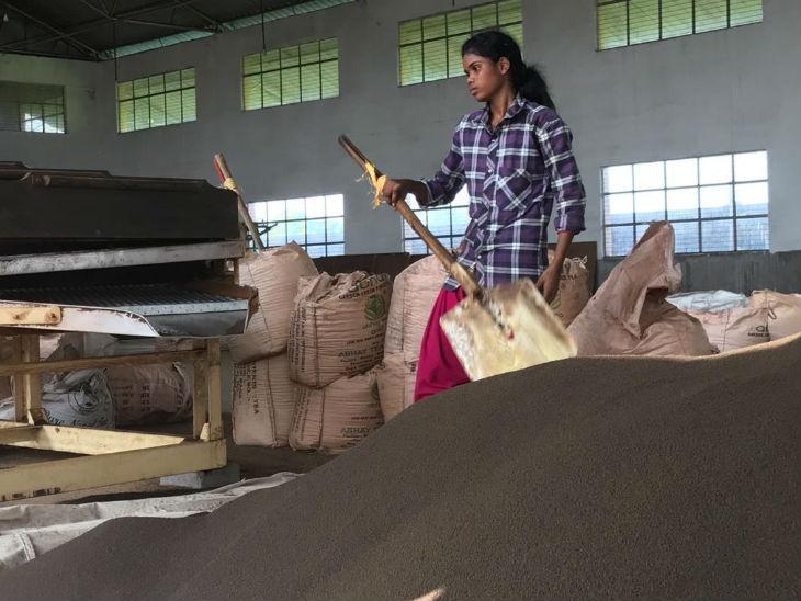 पिछले दो दशकों में ही यहां के किसानों ने चाय की खेती शुरू की है। आज भी बिहार में चाय का उत्पादन किशनगंज जिले के दो प्रखंडों तक ही सीमित है।
