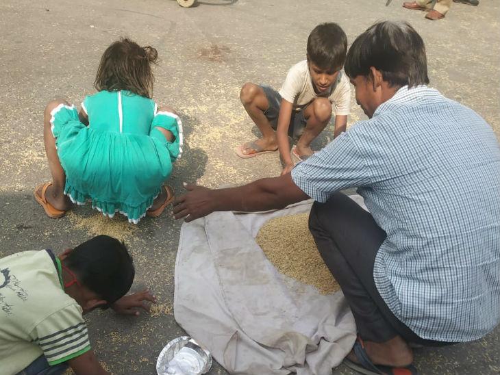 बच्चों ने सड़क पर बिखरे धान को बटोरा।