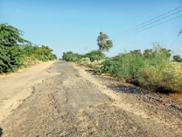 सेड़वा-दीपला सड़क क्षतिग्रस्त कंकरीट और गड्ढों में बदली रोड|बाड़मेर,Barmer - Dainik Bhaskar