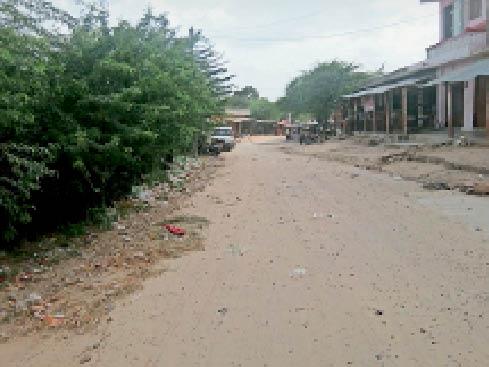सांसद आदर्श पंचायत का दर्जा, सड़कों की मरम्मत न सफाई|बाड़मेर,Barmer - Dainik Bhaskar