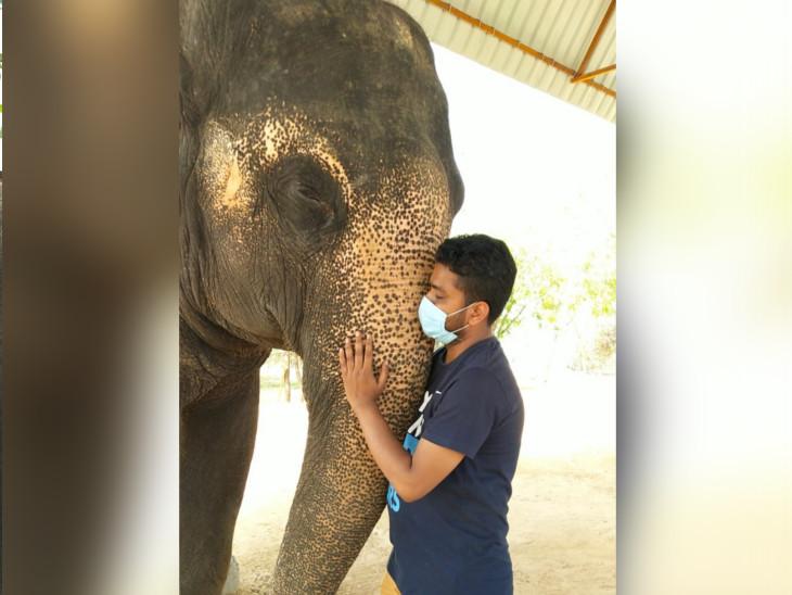 चार हाथियों की मौत और एक महावत की आत्महत्या ने इस व्यवसाय से जुड़े लोगों को निराश किया है।