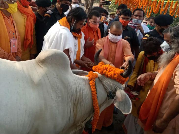योगी ने बाल्मीकि आश्रम में रामायण पाठ का शुभारंभ किया, गोरक्षा हवन के बाद गाय को खिलाया गुड़|उत्तरप्रदेश,Uttar Pradesh - Dainik Bhaskar