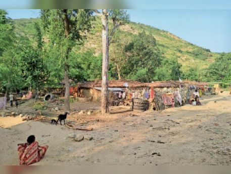 A village in Nawada where there is not even a pucca house | Nawada, Nawada - Dainik Bhaskar