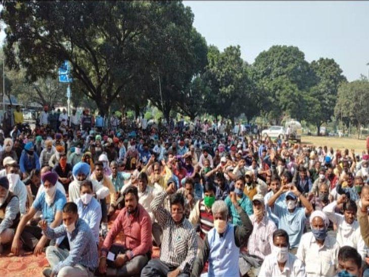 यूटी और एमसी कर्मचारियों का विरोध प्रदर्शन; मांगे पूरी नहीं होने पर 26 नवंबर को हड़ताल की चेतावनी|चंडीगढ़,Chandigarh - Dainik Bhaskar