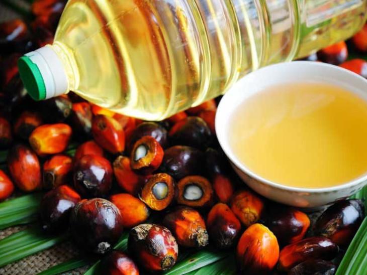 आलू-प्याज के बाद अब खाने के तेल की कीमतें बढ़ीं, 6 महीने में 53% महंगा हुआ क्रूड पाम ऑयल|बिजनेस,Business - Dainik Bhaskar