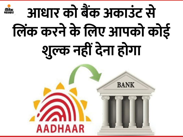 सभी बैंक अकाउंट्स को आधार से जोड़ना जरूरी, ऑनलाइन चेक करें आपका खाता लिंक है या नहीं|यूटिलिटी,Utility - Dainik Bhaskar