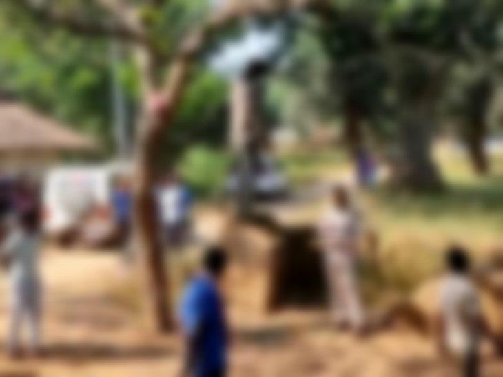 युवक ने फंदा लगाकर जान दी, पेड़ से लटका मिला शव; प्रेम प्रसंग में खुदकुशी का अंदेशा|छत्तीसगढ़,Chhattisgarh - Dainik Bhaskar