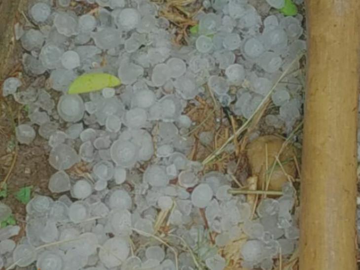 जयपुर में कई इलाकों में गिरे ओले। इससे फसलों को नुकसान की आशंका है।
