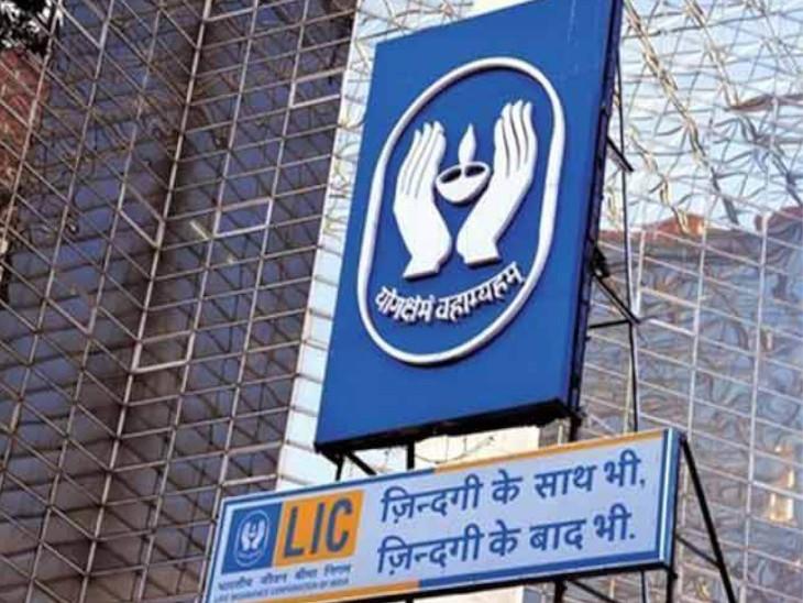 IPO से पहले सरकार ने LIC के वैल्यूएशन के लिए निविदा मंगाई, 8 दिसंबर तक कर सकते हैं आवेदन|बिजनेस,Business - Dainik Bhaskar