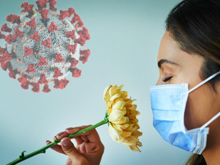 कोरोना से संक्रमित होने पर स्वाद और सुगंध न समझ पाना अच्छा संकेत, हालत नाजुक होने का खतरा कम लाइफ & साइंस,Happy Life - Dainik Bhaskar