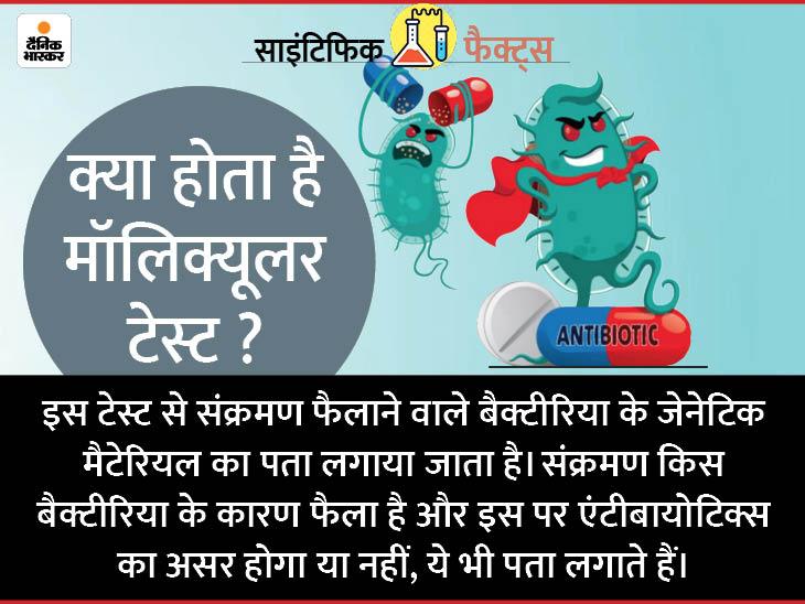 बैक्टीरिया से होने वाली बीमारियों में एंटीबायोटिक्स असर करेगी या नहीं, बताएगा मॉलिक्यूलर टेस्ट|लाइफ & साइंस,Happy Life - Dainik Bhaskar