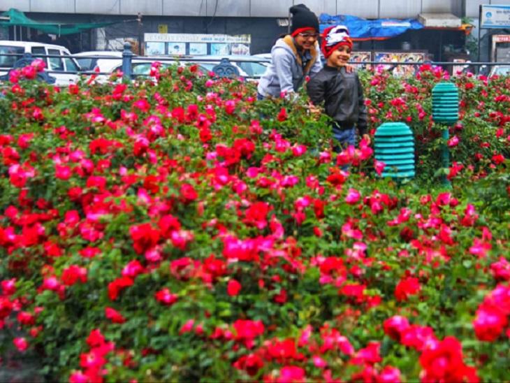 यह तस्वीर रायपुर की है। मौसम में ठंडक घुली तो फूलों में भी बहार आ गई। ऐसे में बच्चे भी खुद को रोक नहीं सके और मस्ती करने निकल पड़े।