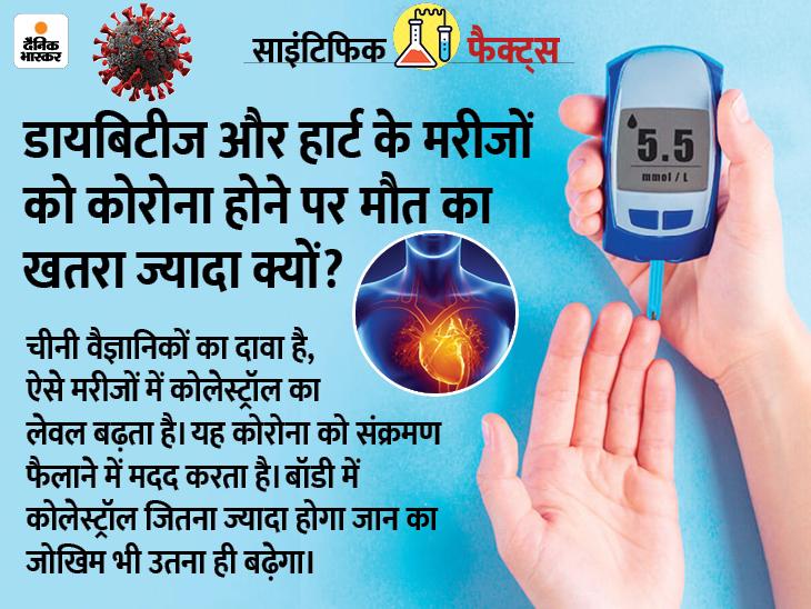 हार्ट और डायबिटीज के मरीजों में कोरोना होने पर बढ़ा हुआ कोलेस्ट्रॉल मौत का खतरा बढ़ाता है, इसे कंट्रोल करें|लाइफ & साइंस,Happy Life - Dainik Bhaskar