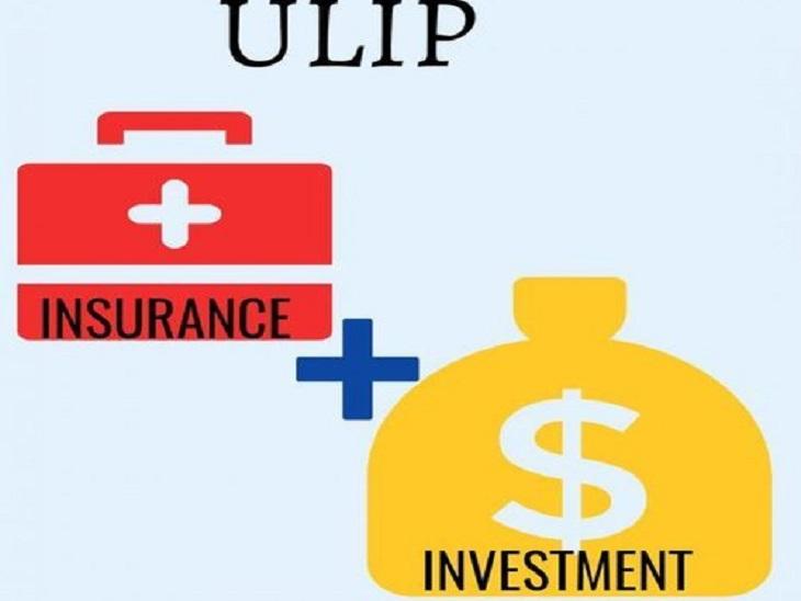 यूलिप प्लान से अपने परिवार को दें वित्तीय सुरक्षा, इसमें लाइफ इंश्योरेंस के साथ मिलेगा बेहतर रिटर्न|यूटिलिटी,Utility - Dainik Bhaskar