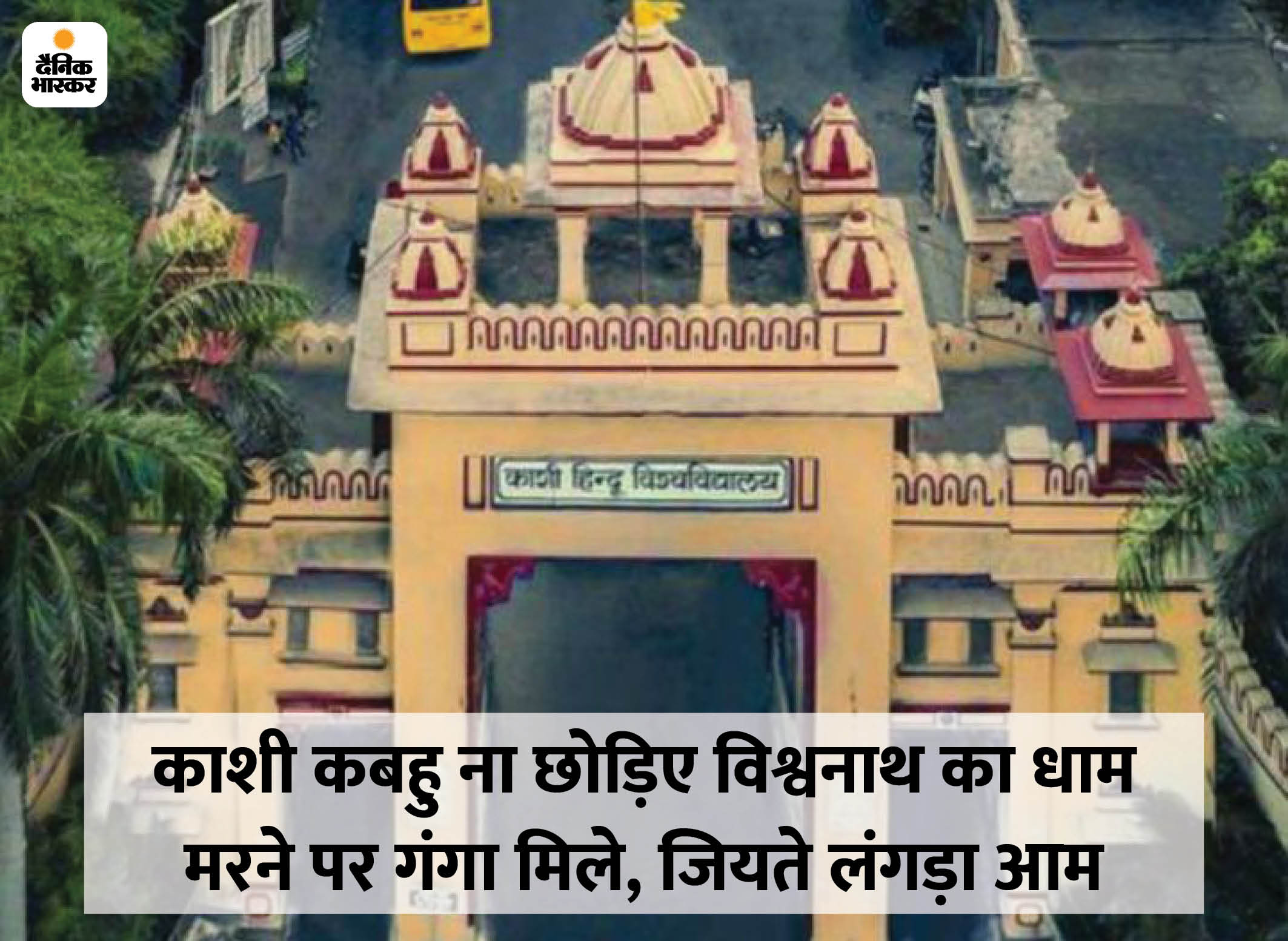 दो साल के PG कोर्स को मंजूरी; दिया जाएगा लंगड़ा आम से लेकर बिस्मिल्ला खान की तान का ज्ञान वाराणसी,Varanasi - Dainik Bhaskar
