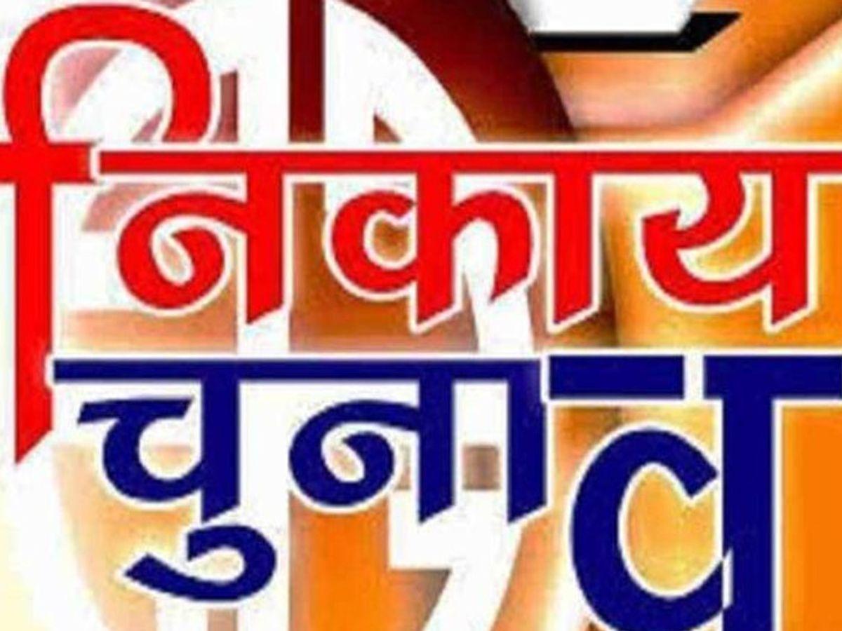 स्थानीय निकाय चुनाव की जिम्मेदारी बीजेपी विधायक हर्ष संघवी को सौंपी गई गुजरात,Gujarat - Dainik Bhaskar