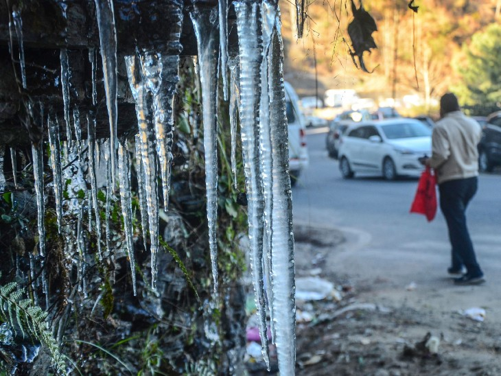 शिमला-ढली बाईपास के पास झाड़ियों पर बर्फ जम गई।