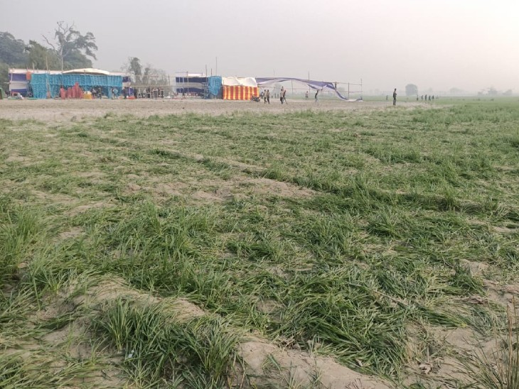 भागलपुर के बिहपुर में सीएम के कार्यक्रम के लिए बने पंडाल और सामने रौंदी गई खेत की फसल।