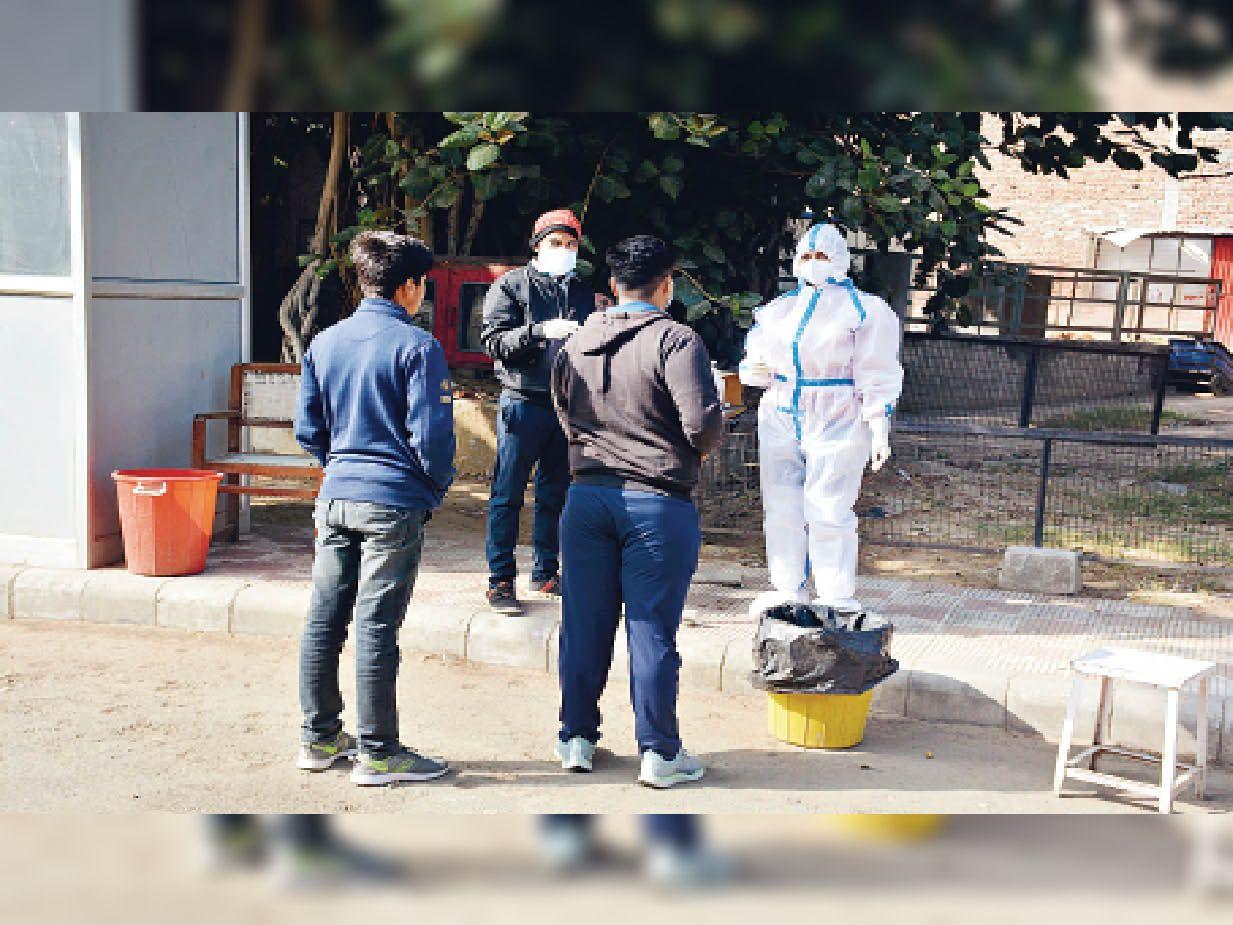 सात माह बाद कोरोना में दिखी रिकॉर्ड गिरावट, 732 लोगों की सैंपलिंग में 7 ही मिले संक्रमित|रोहतक,Rohtak - Dainik Bhaskar