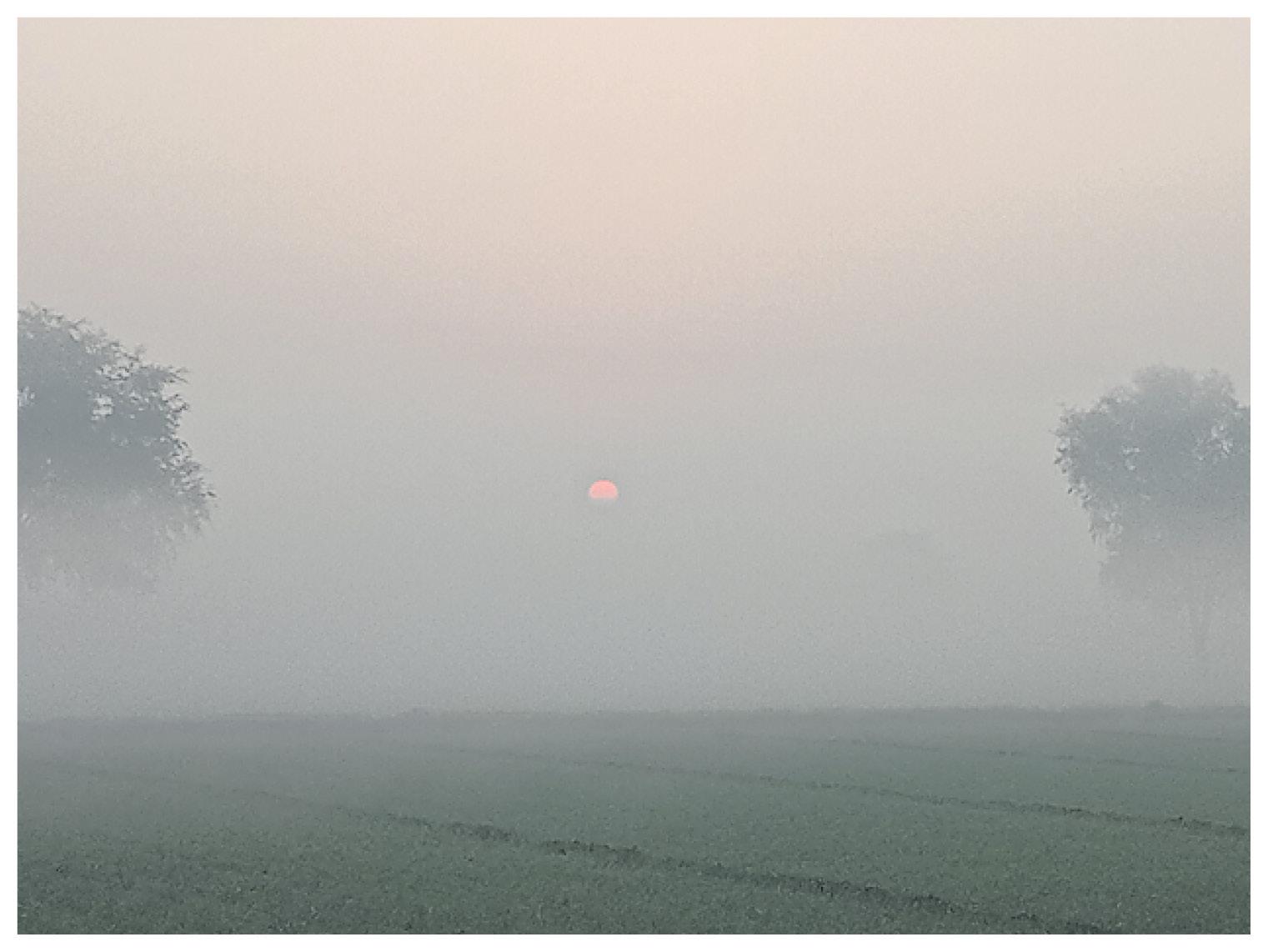 राजस्थान के श्रीगंगानगर में सुबह 8.30 बजे तक घना कोहरा छाया रहा।