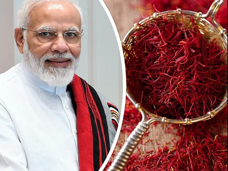 वोकल फॉर लोकल: प्रधानमंत्री नरेंद्र मोदी ने 'मन की बात' में लोगों से की कश्मीरी केसर खरीदने की अपील, इससे बनी चाय और फिरनी का स्वाद आप कभी भूल नहीं पाएंगे