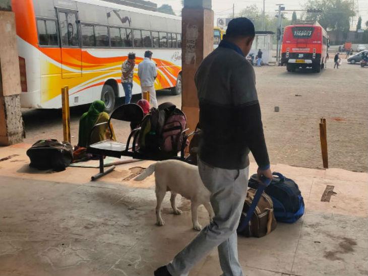 भोपाल में नए साल के जश्न को देखते हुए विशेष चेकिंग अभियान शुरू किया गया है।  बस स्टैंड पर पुलिसकर्मी योग्य सामानों की डॉग की मदद से जांच करते हैं।
