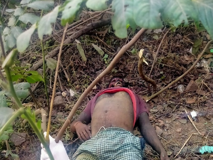 5 दिनों से लापता युवक का चेहरा कुत्तों ने नोच खाया, घर के पिछले हिस्से में मिली लाश|छत्तीसगढ़,Chhattisgarh - Dainik Bhaskar