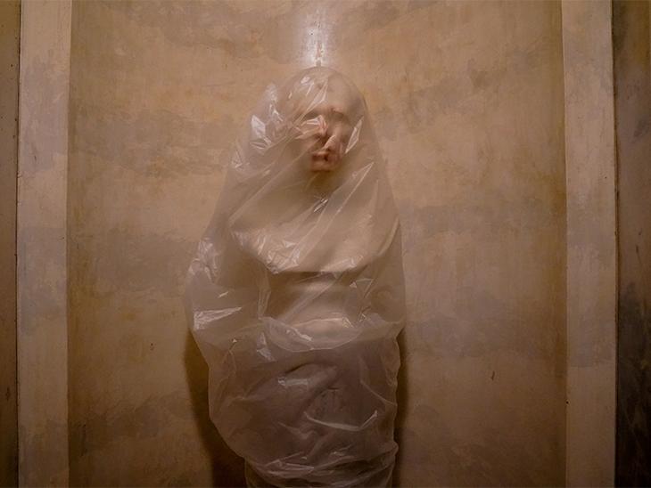US Capitol के कैम्पस में लगी अमेरिकी राष्ट्रपति जकारी टेलर की मूर्ति को भी नुकसान पहुंचा। फिलहाल इसे पॉलीथिन से ढंक दिया गया है।