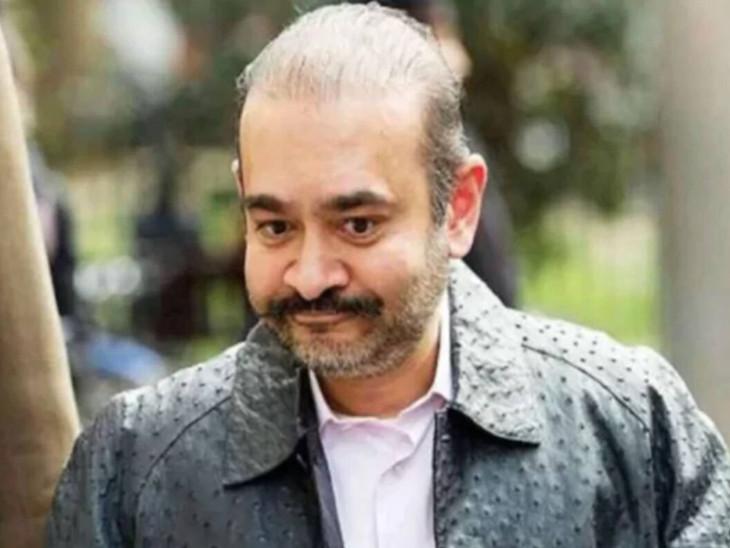 नीरव मोदी पोंजी जैसी योजना चला रहा था, भारतीय अधिकारियों की पैरवी कर रही वकील ने ब्रिटेन की अदालत में दी दलील|बिजनेस,Business - Dainik Bhaskar