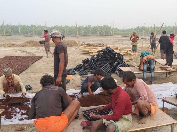 रोहित करीब 100 लोगों को रोजगार दे रहे हैं, जो उनके साथ मिलकर काम करते हैं और उनकी मदद करते हैं।