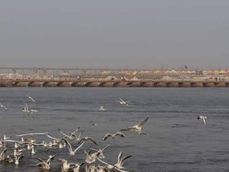 संगम तट पर बनाया गया पीपे का पुल।