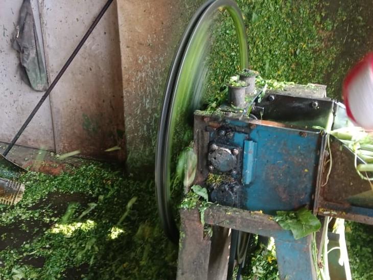 हरे चारा काटने की मशीन बाजार में सुबह से चलती रही।