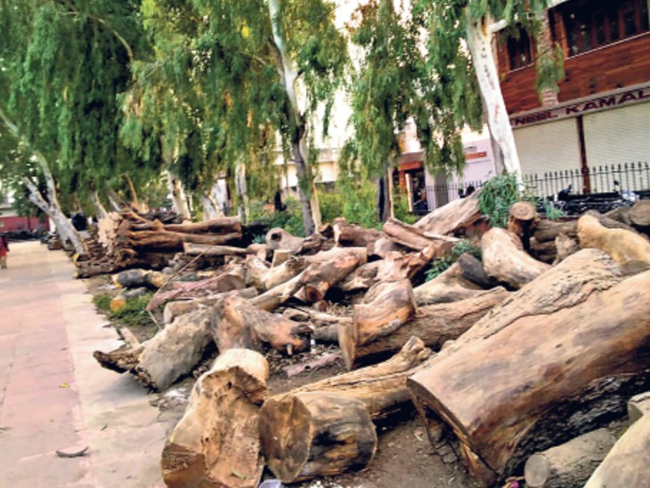 जहां बचपन खिलखिलाने की तैयारी थी; अब वहीं पर पार्किंग बना पार्क का दम घोंट रहे हैं|जयपुर,Jaipur - Dainik Bhaskar