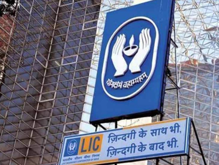 LIC के इंडिविजुअल सालाना प्रीमियम में 45% की गिरावट आई, इस दौरान बीमा इंडस्ट्री की ग्रोथ 8% रही|बिजनेस,Business - Dainik Bhaskar