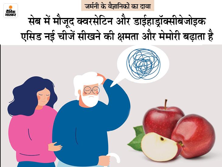 याद्दाश्त घटने से रोकना है तो सेब खाएं, इसे छिलके के साथ खाना ज्यादा फायदेमंद; जूस असरदार नहीं|लाइफ & साइंस,Happy Life - Dainik Bhaskar