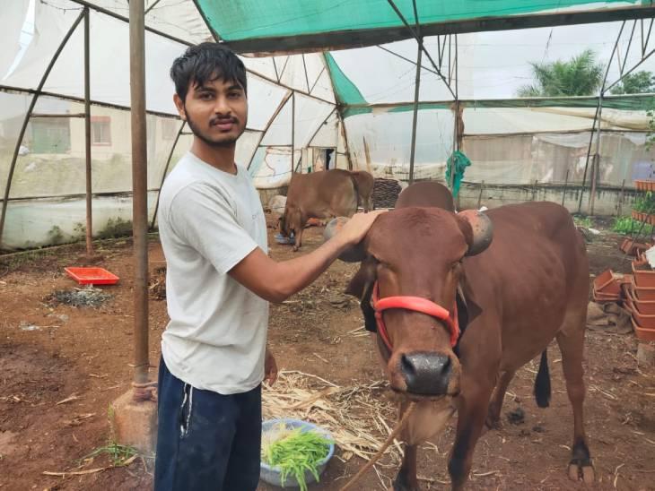 खेती के साथ वे पशुपालन भी करते हैं। अभी उनके पास 4-6 गाए हैं। वे इनका दूध पैक करके सप्लाई करते हैं।
