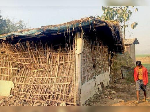 रविवार की रात दिघलबैंक के धनतोला दुर्गामंदिर टोला में हाथियों ने तोड़ा फूस का घर।
