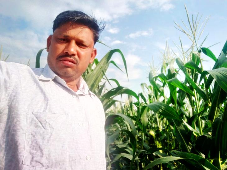 मप्र के छिंदवाड़ा जिले के किसान गुरु प्रसाद पवार ने 6 एकड़ जमीन पर खेती से हुई कमाई से आज 50 एकड़ जमीन खरीद ली है। - Dainik Bhaskar