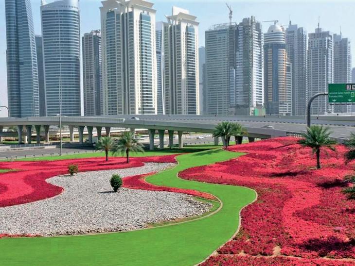 फूलों से लकदक दुबई: 13 लाख वर्ग मीटर में 6 करोड़ फूल, माली को क्षुद्र ग्रह से घुमाया जाता है, ताकि वे अपनी मेहनत से खाद बना सकें।