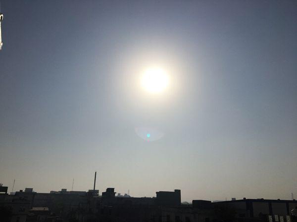 रात का पारा 10 डिग्री तक घटा, गेहूं को 10 दिन ऐसा ही मौसम चाहिए हरियाणा,Haryana - Dainik Bhaskar
