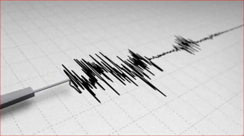 8.1 तीव्रता का भूकंप, सुनामी का अलर्ट; तटीय इलाकों में रहने वालों से ऊंचाई पर जाने की अपील|विदेश,International - Dainik Bhaskar
